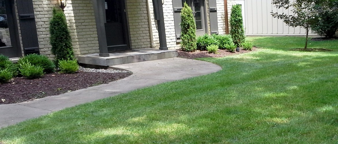 Lawn care in kansas city sk lawn care lawn care for Lawn and garden services
